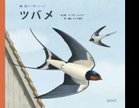 鳥の一年シリーズ『ツバメ』