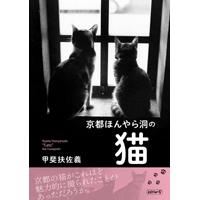 『京都ほんやら洞の猫』
