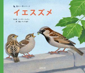 鳥の一年シリーズ『イエスズメ』